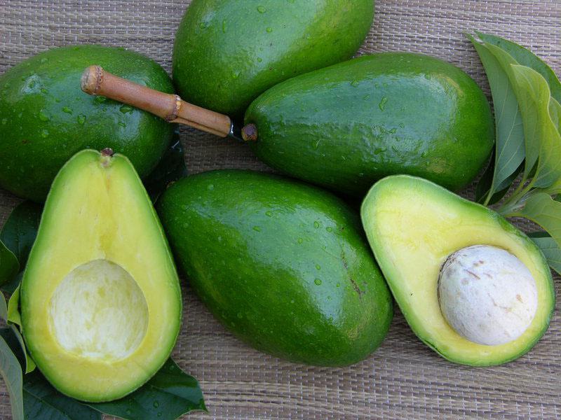 Овощи и фрукты, свойства авокадо