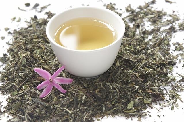 Мир напитков. Белый чай.