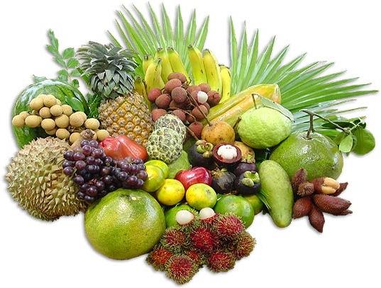 Овощи и фрукты. Тропические фрукты.